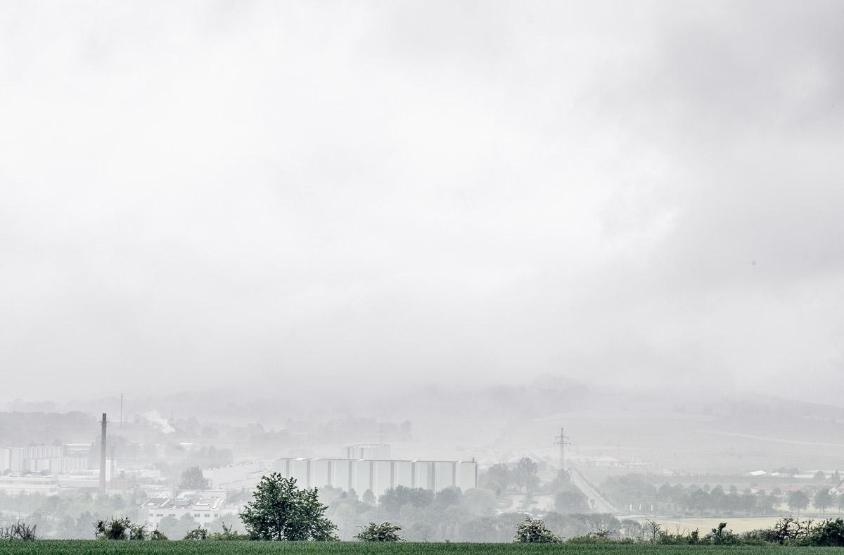 Blühende Landschaften Fotografie